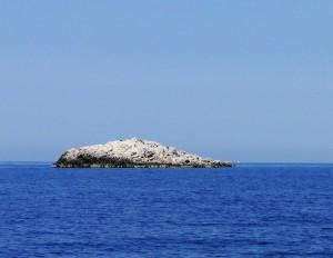 Ostrov Murter: Novinka v dovolenkových destinacích