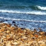 Dovolená na ostrově Vir