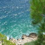 Sháníme cenově dostupné ubytování na divokém ostrově Vir